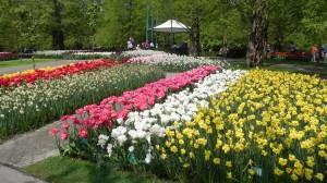 Jardins de Keukenhoff