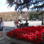Verona toda florida